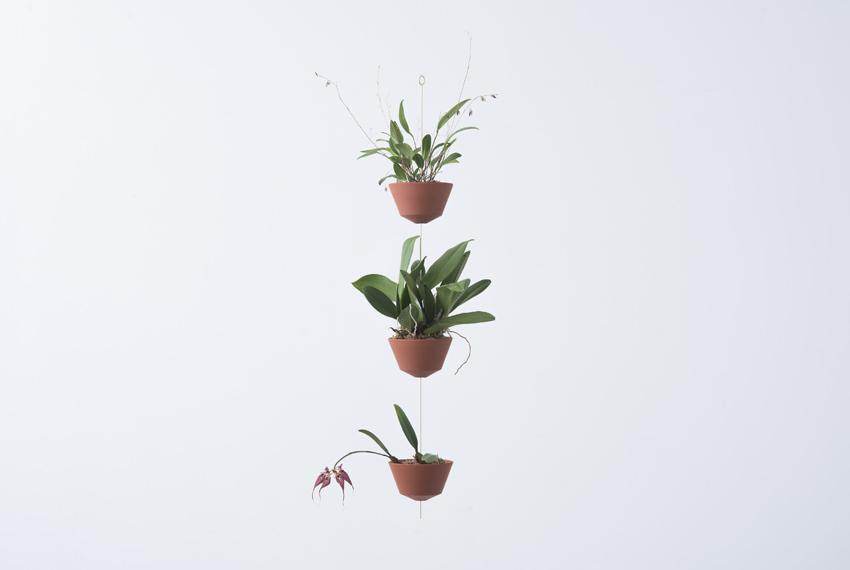 orchid pot 7